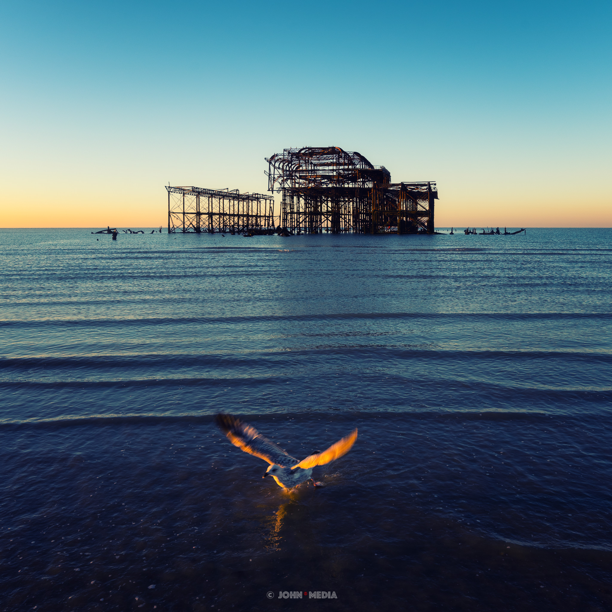 Brighton West Pier and the gull